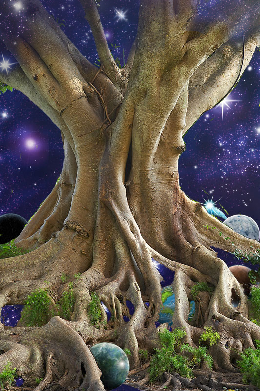 Tree of Life (Starseed) – Toy Soldier Saga at WorldAnvil